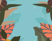 Inkscape vs. Illustrator